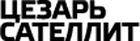 Охрана массовых мероприятий, цены от ООО Цезарь Сателлит в Архангельске